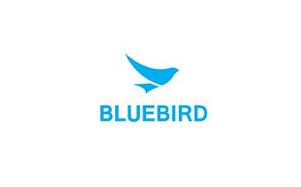 Translation bluebird