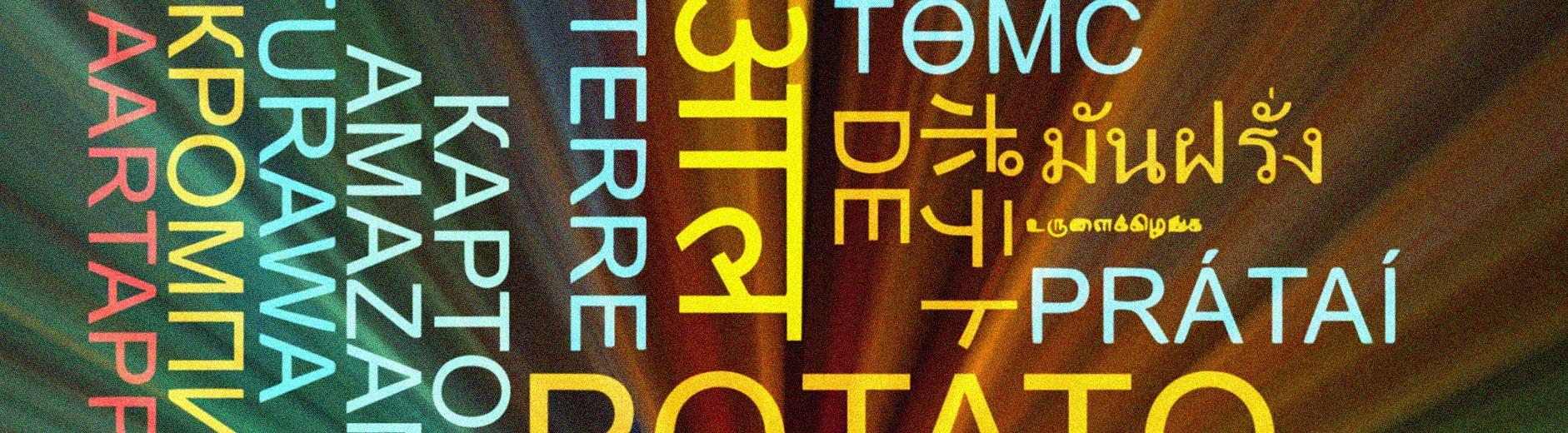 blog main banner